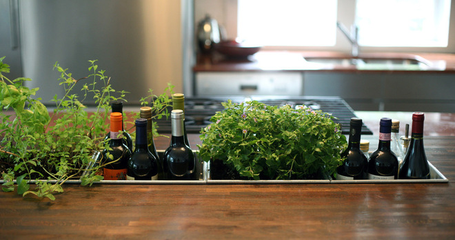 Design is in the Kitchen Details: herbs IN the counter
