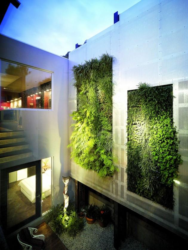 Urban garden design, modern architecture