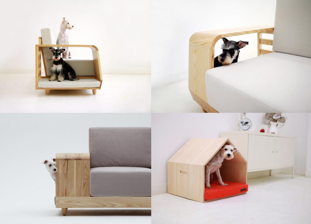 Modern Design for Dogs