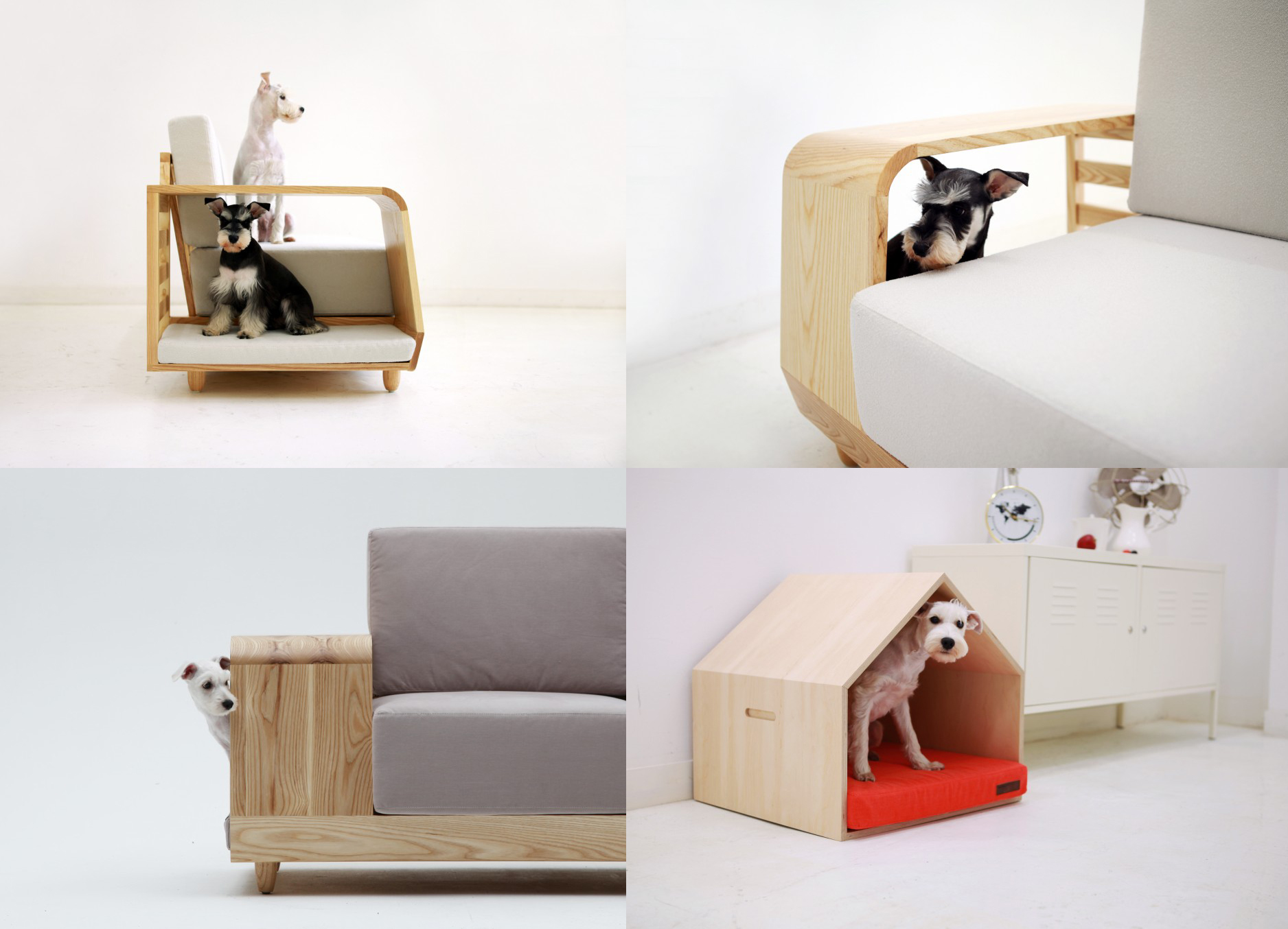 Modern design ideas for our furry friends studio mm Dog house sofa