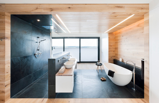 Contemporary Walk Through Shower