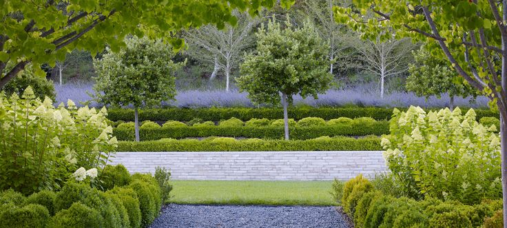Contemporary Landscapes, Modern Garden Designs: Inspiration for Spring