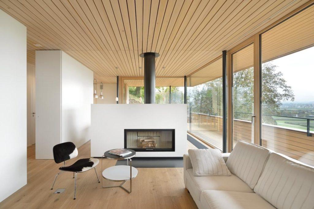Contemporary Home Design - Fireplaces